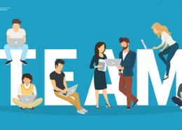 ERP System Team