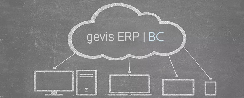 gevis-erp-cloud
